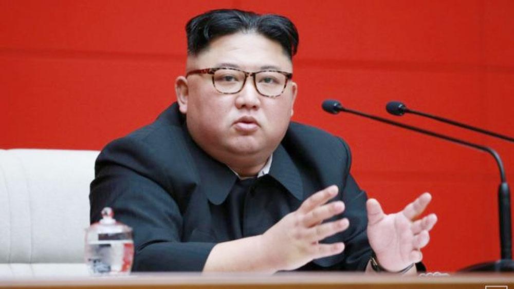 Triều Tiên sửa hiến pháp, Nhà lãnh đạo Kim Jong-un, nguyên thủ quốc gia chính thức