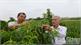 Xây dựng tổ chức Hội Sinh vật cảnh Bắc Giang vững mạnh, quan tâm thu hút hội viên