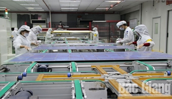 Bac Giang enterprises take advantage of tariff-related opportunities to boost exports