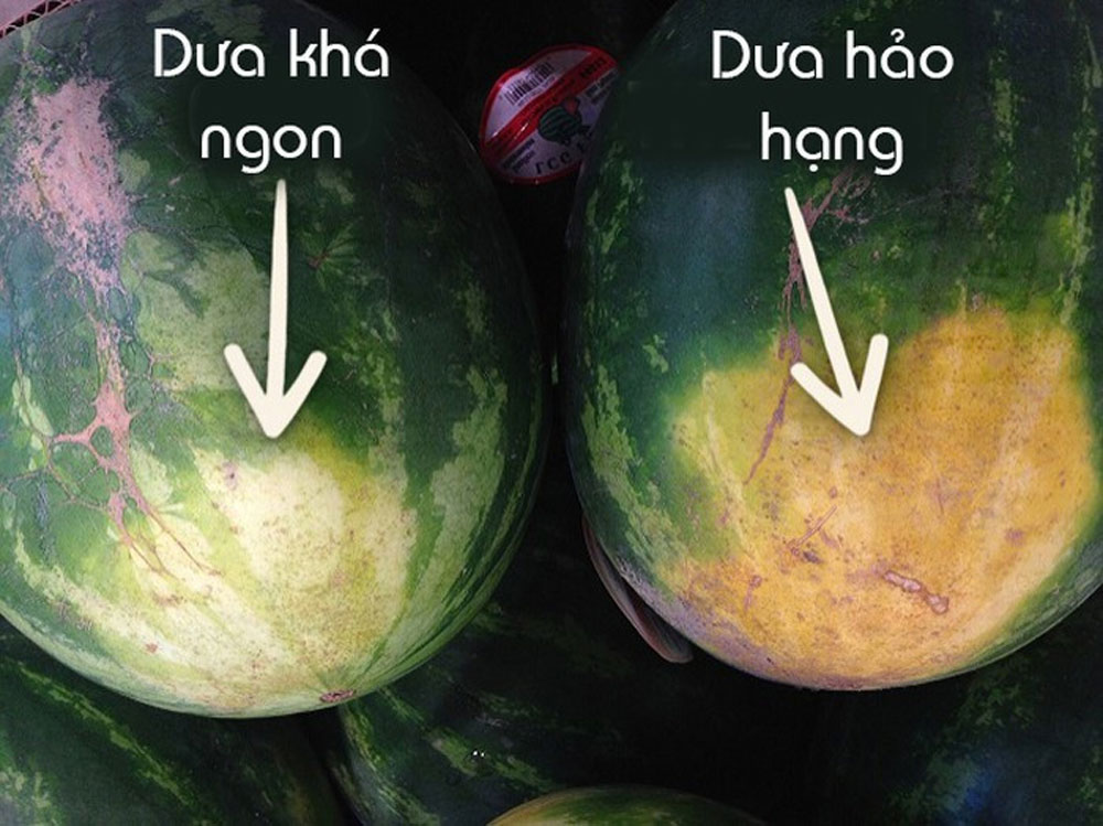 Cách chọn dưa hấu chuẩn, ngọt lừ, không tiêm nước, quả dưa ngon ngọt