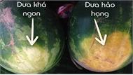 Cách chọn dưa hấu chuẩn ngọt lừ, không tiêm nước