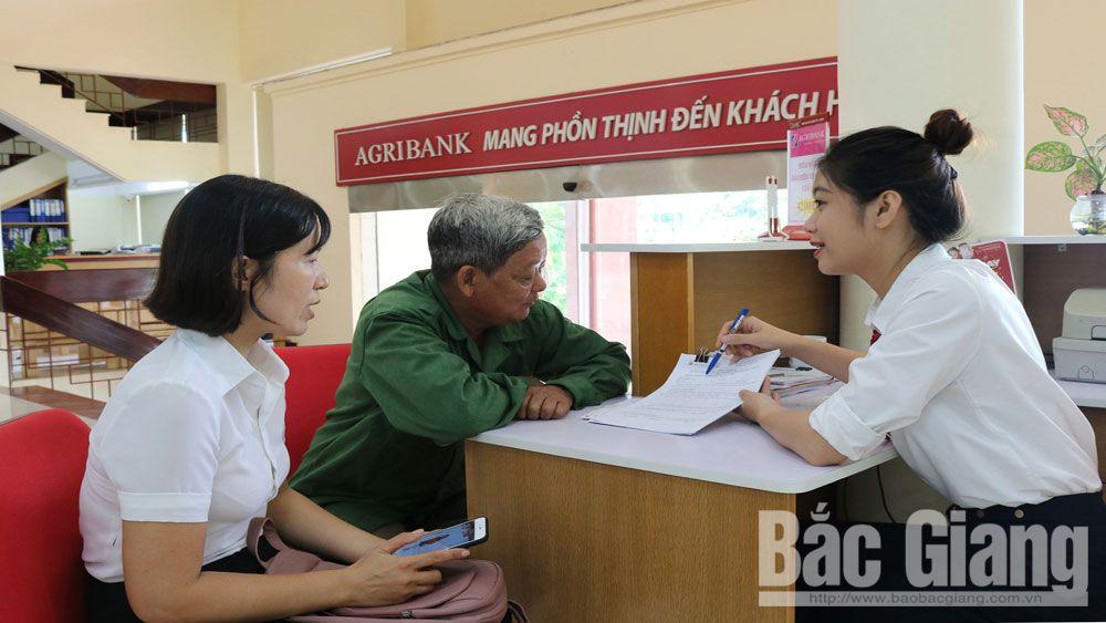 hoạt động tín dụng, huy động vốn và cho vay, Agribank Chi nhánh Bắc Giang II,