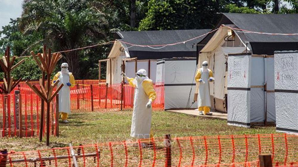 WHO, tuyên bố dịch Ebola, vấn đề y tế khẩn cấp toàn cầu