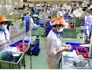Bac Giang: 2 Hong Kong projects invest over 50 million USD in Van Trung and Quang Chau Industrial Parks