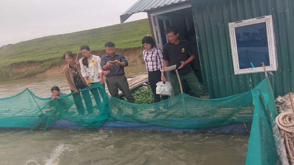 Cage fish farming on Cau River