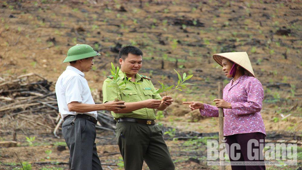 Bắc Giang: Chuyển biến trong công tác giảm nghèo