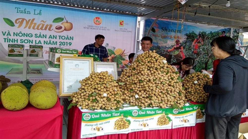 Son La province, Longan, Safe Farm Produce Week 2019, Hanoi, agricultural products, VietGap and GlobalGap