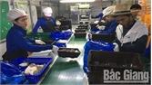Nâng cao năng lực cán bộ cơ sở làm tư vấn cho người xuất khẩu lao động