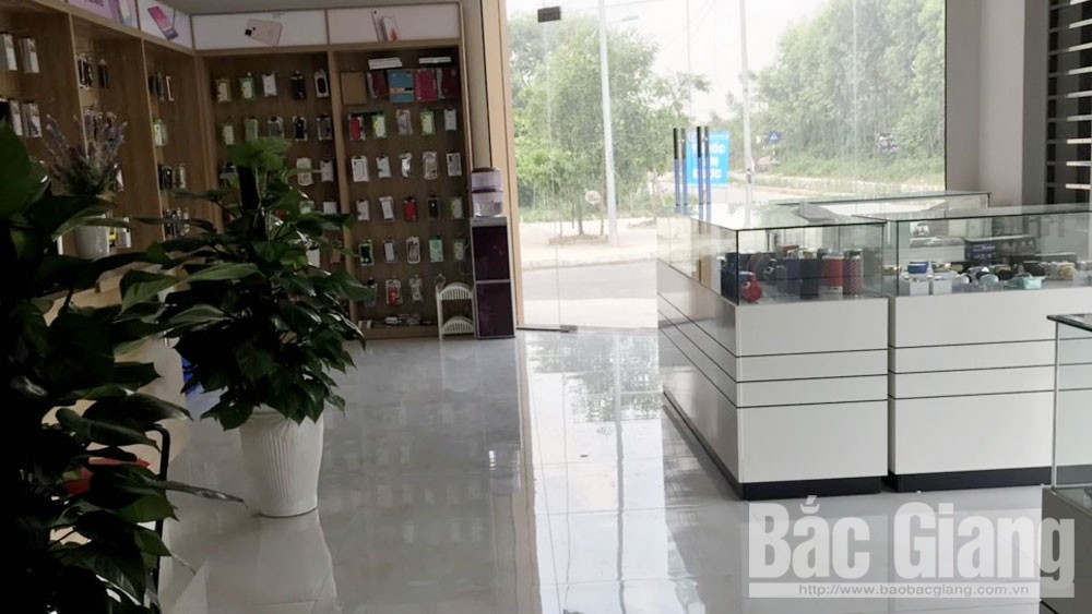 trộm cắp tài sản, TP Bắc Giang, đột nhập, ăn cắp điện thoại, ví tiền.