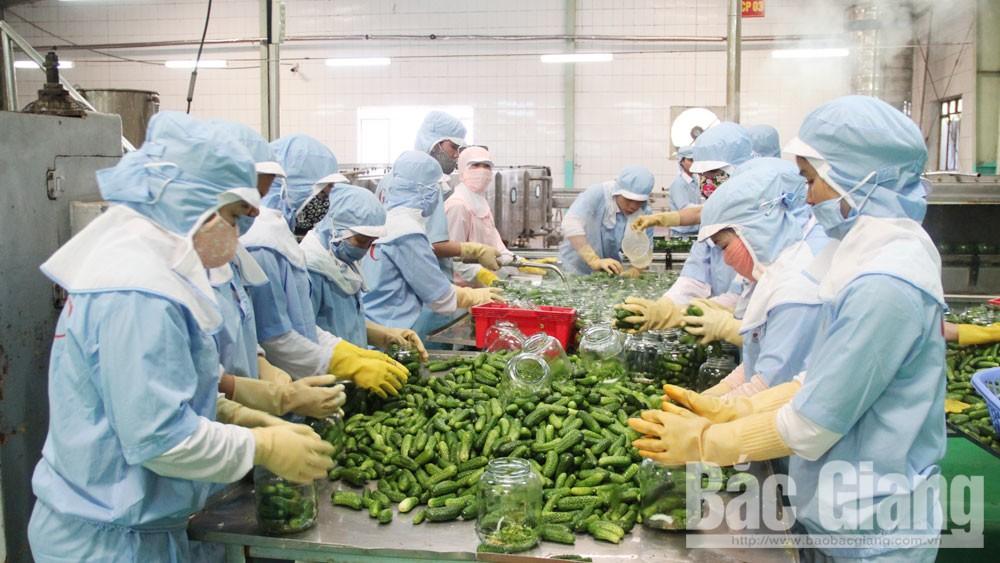 EVFTA, hiệp định, cơ hội, Bắc Giang, doanh nghiệp