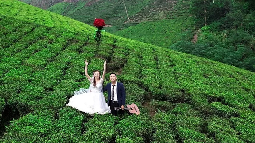 Vietnam, finest tea producer, natural delights, Thai Nguyen province, natural attractions,  beautiful places, tourism spotlight, Nui Coc Lake