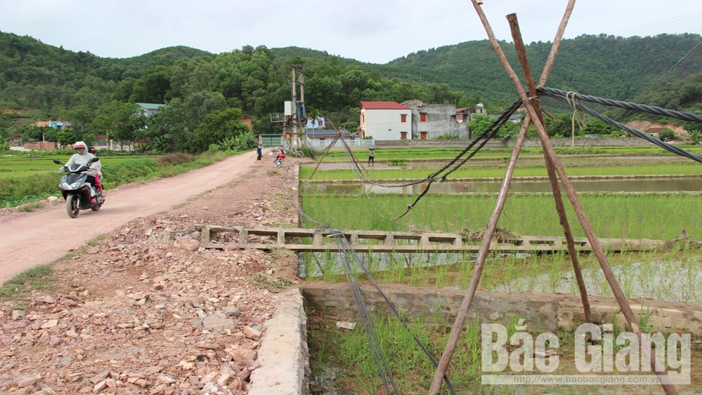 Tiềm ẩn, nguy cơ, mất an toàn, do cột điện đổ, Công an tỉnh Bắc Giang, tai nạn