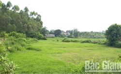 Xã Tiến Thắng (Yên Thế): Đường bị chiếm dụng, nông dân để ruộng hoang