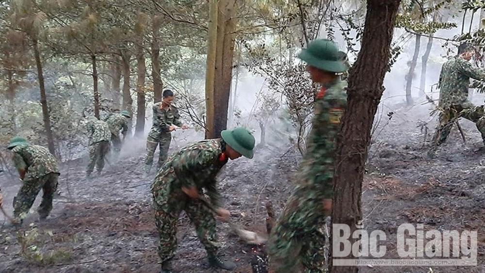60 cán bộ, chiến sĩ Trung đoàn 2, Sư đoàn 3 (Quân khu 1) chữa cháy rừng tại xã Yên Lư (Yên Dũng)