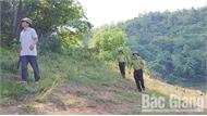 Lợi dụng phát luỗng, phá rừng tự nhiên