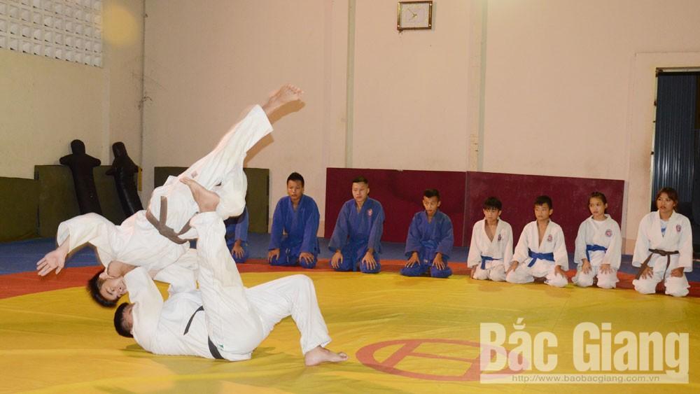Bắc Giang, thể thao, thành tích cao, sân chơi vô địch