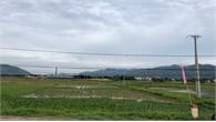 Lục Nam (Bắc Giang): Đầu tư 70 tỷ đồng, doanh nghiệp vẫn chưa có điện để sản xuất