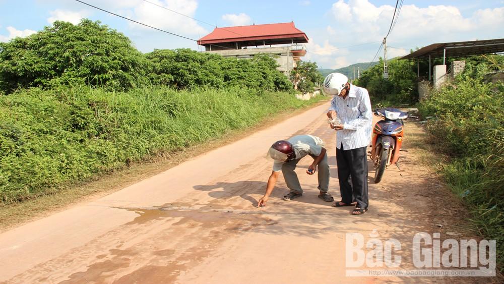 Rải đinh trên đường giao thông, đinh tặc, Công an xã Phượng Sơn, Công an huyện Lục Ngạn