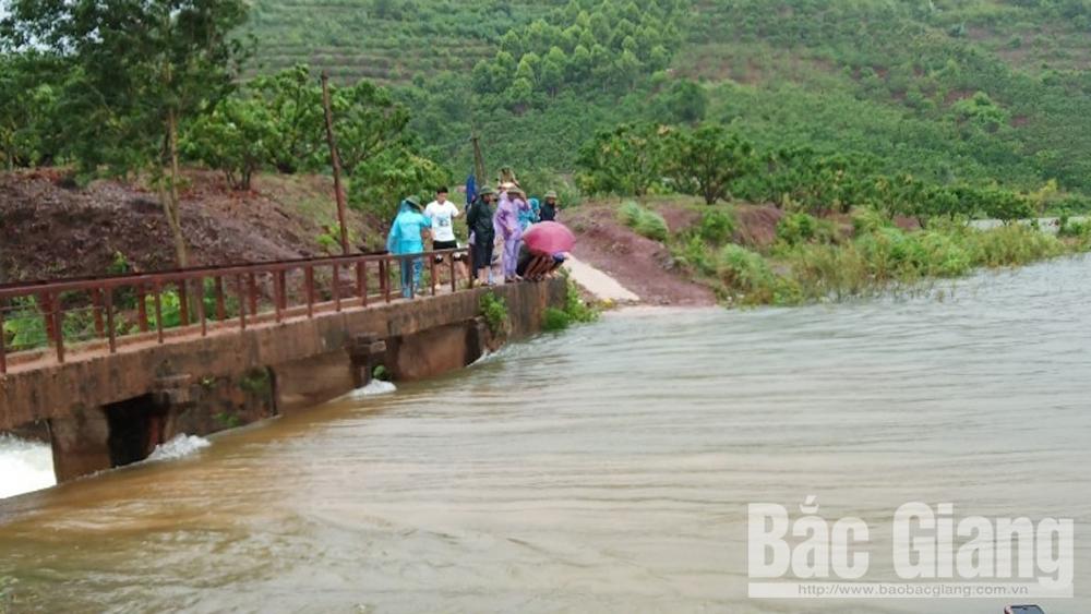 Bắc Giang, mưa lớn, cây trồng bị ngập