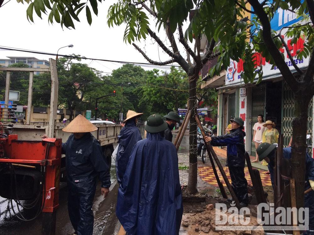 ngập úng, cây xanh gẫy đổ, TP Bắc Giang