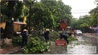 Khắc phục ngập úng, cây xanh gãy đổ do mưa bão tại TP Bắc Giang