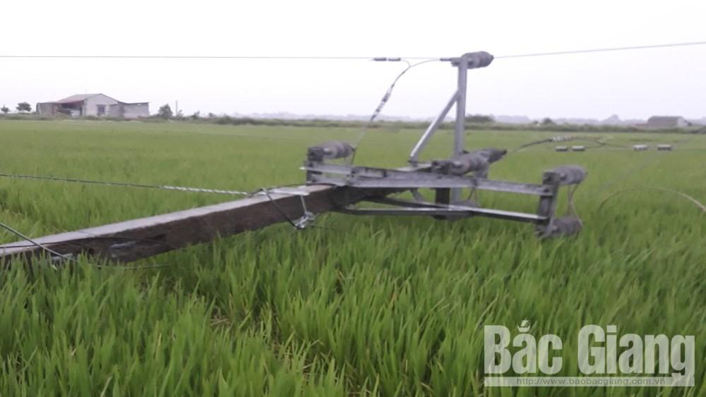Bắc Giang: Hơn 65 nghìn khách hàng của ngành điện bị ảnh hưởng do cơn bão số 3
