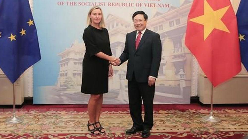 EU, cooperation ties, Vietnam, leading partner, specific policies and measures, cooperative relations, Vietnam-EU relations
