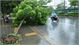 Dự báo thời tiết ngày 6-8: Khu vực miền Bắc mưa dông, đề phòng gió giật mạnh