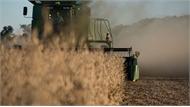 Trung Quốc ngừng mua nông sản Mỹ