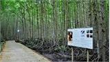 Rừng Sác-khu dự trữ sinh quyển thế giới