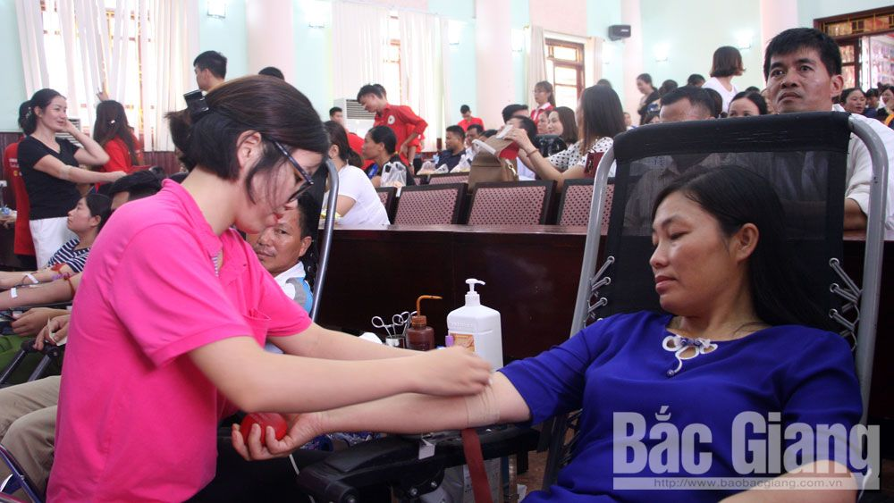 Good deed, Bac Giang province, Family of Duong Thao Nguyen, voluntary blood donation festival,  meaningful activity, outstanding blood donors