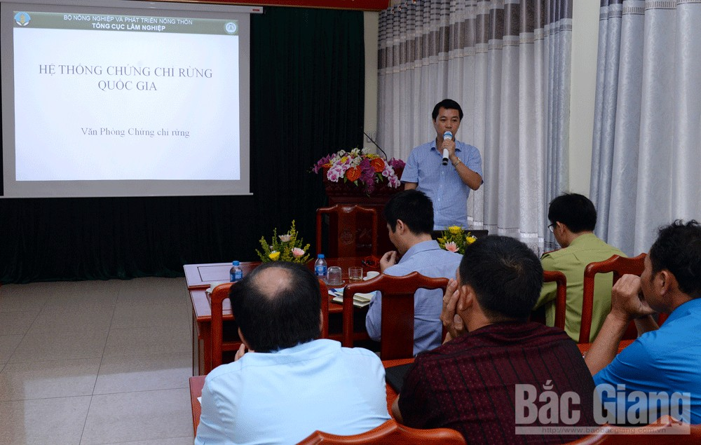 Bac Giang province, wood products, export value, input material, forestry processing and trading facilities, legally compulsory trade, national forestry certification system,