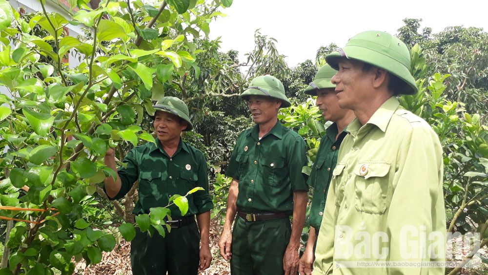 Muoi village's leader sets fine example in all local movements