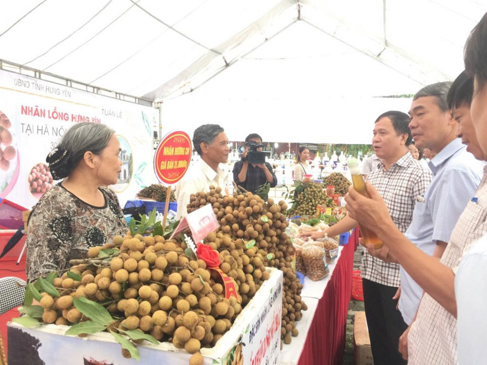 2019 Hung Yen longan week,  Hanoi, Longan lovers,  specialty fruit, tropical fruit, top 50 famous fruits, national trademark, geographical indication