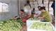 Bắc Giang xây dựng nhãn hiệu sản phẩm nông nghiệp: Hợp tác xã làm nòng cốt