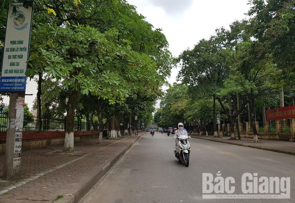 Ra quân bảo đảm trật tự đô thị, chợ cóc, hàng rong, Thành phố Bắc Giang
