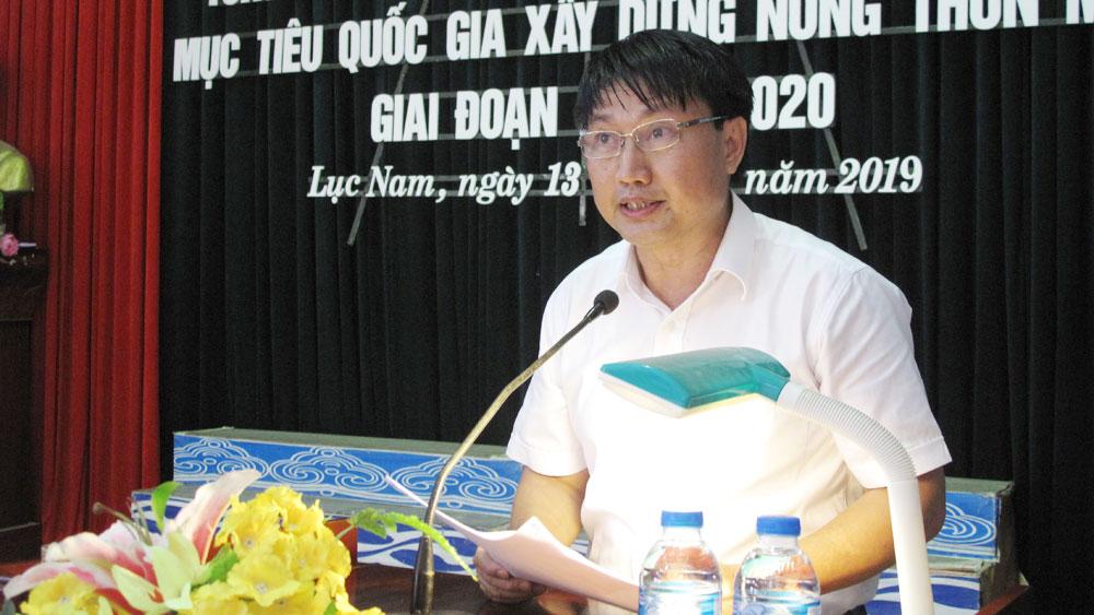 Lục Nam, xây dựng nông thôn mới, chương trình mục tiêu quốc gia