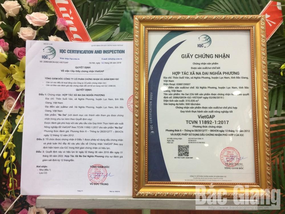 Quyết định cấp Giấy Chứng nhận HTX Na dai Nghĩa Phương sản phẩm đạt tiêu chuẩn VietGAP.