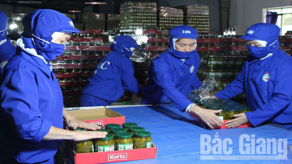 Bac Giang province, investment in agriculture, commodity production, preferential mechanism and policy,  processing facilities, farm produce processing line