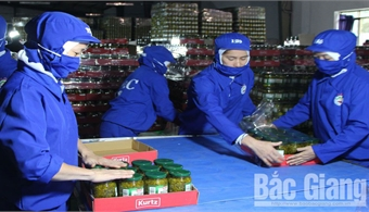 Bac Giang attracts investment in agriculture