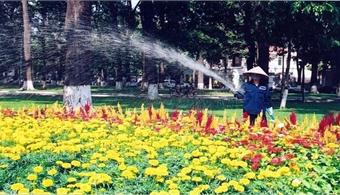 HCM City to increase greenery, improve public lighting