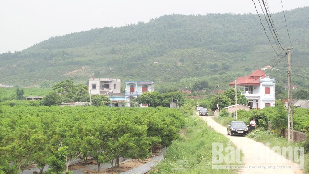 Chung sức phát triển KT-XH vùng miền núi, dân tộc thiểu số trên địa bàn huyện Lục Nam