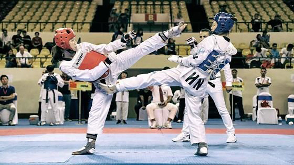 Vietnam win 35 golds at Asian Open Taekwondo Championship