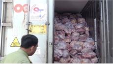 Thịt lợn tại cơ sở làm giò, chả ở Đồng Nai nhiễm virus tả lợn châu Phi
