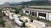 500 xe container thanh long tắc đường sang Trung Quốc