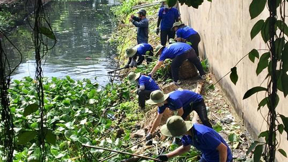 Green Summer volunteers, clean up canals, roads and houses, invasive growth,  young volunteers,  26th annual campaign