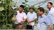 Tạo điều kiện thuận lợi nhất cho các HTX vay vốn phát triển nông nghiệp