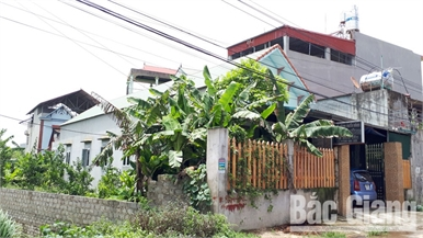 Tranh chấp đất ở xã Quỳnh Sơn (Yên Dũng): Đề nghị thu hồi sổ đỏ cấp sai quy định
