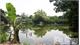 Xung quanh việc giao thầu ao, hồ tại xã Hoàng Vân (Hiệp Hòa): Cần xác định rõ nguồn gốc đất