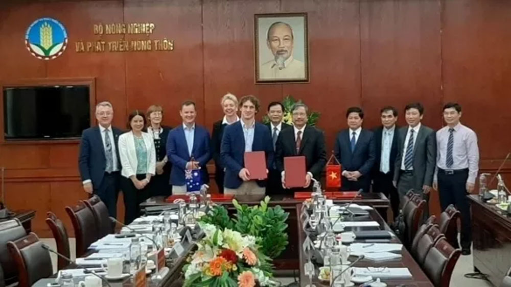 Vietnam, Australia, farm produce trading, agricultural cooperation, high-tech agriculture, organic agriculture, meat import regulations, Australian market